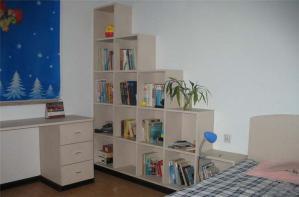 家装实用矮书柜